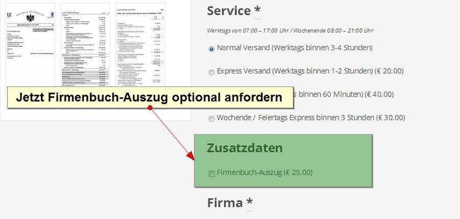 bilanzen-oesterreich-optional-firmenbuch-auszug