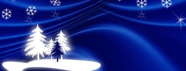 weihnachtsgruss-2-feiertag-607-233